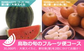 鳥取の旬のフルーツお届けリターンコース