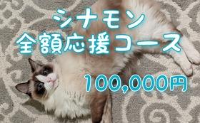 全額応援コース:100,000円(リターン不要)