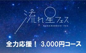【全力応援!】流れ星フェス 3,000円応援コース
