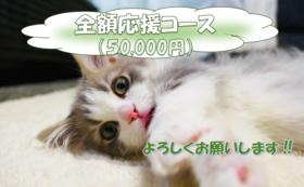 全額応援コース:50,000円(リターン不要)