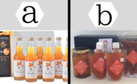 E|杏製品セットC