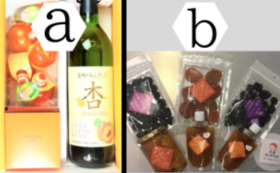 G|杏製品セットE