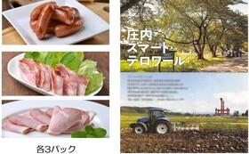 """""""山形大学ブランドの豚肉加工品""""3セットとプロジェクトの紹介冊子、スマート・テロワール構想の出前講演会にお伺いします"""