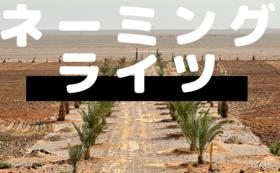 プロジェクトスペシャルサポーター◇農地にお名前掲載◇