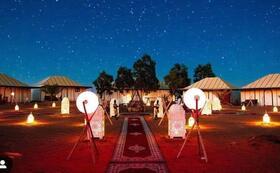 サハラ砂漠の農地ご案内と周遊ドライブ+ラクダライドとグランピング+リヤドマムーシュ3泊