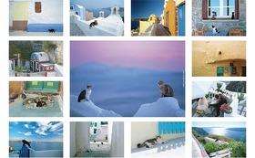 私のオリジナルポストカード(1)13枚 『Aegean Cat』エーゲ海の猫たちです。