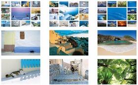 私のオリジナルポストカード 3種類 39枚『Aegean Cat』『Aegean Dog』『世界遺産 小笠原諸島』