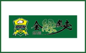 デウソン神戸全緑疾走オリジナルタオル