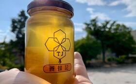 tj養蜂記のはちみつ(240g)