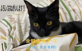 全額応援コース:30,000円(リターン不要)