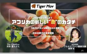 【タイガーモブ企画参加者限定】ADIMAの活動参加券