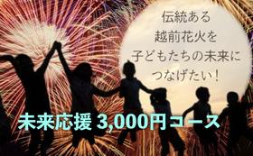 【子どもは宝!】未来応援 3,000円コース
