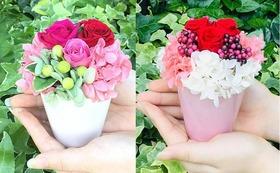 お花で応援