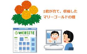 Sくんが育てた花の種 + オンライン講習会 + HP等お名前掲載コース