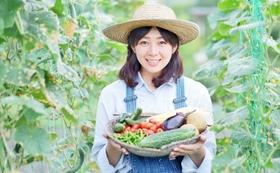 スマート農業で収穫した野菜をお届けします