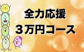 【全力応援】感謝のメール+HPにお名前記載(大)♪
