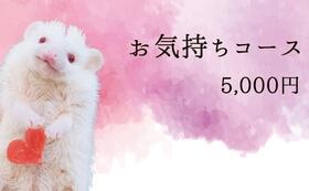 お気持ちコース5000円