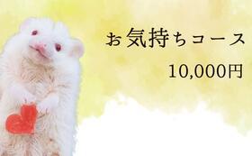 お気持ちコース10000円