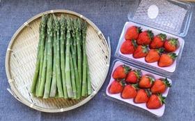 北海道の味 苺「なつみずき」とグリーンアスパラのセット 2倍