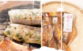 【福井県外の方限定】B定番干物とおさかな串のセット