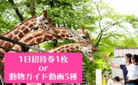 1日招待券 or 動物ガイド動画データ5種コース