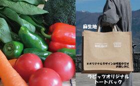 感謝の農薬不使用栽培野菜セット2Lサイズ + 感謝のオリジナルトートバッグ2点 + 感謝のお礼状