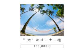 """""""木""""のオーナー権"""