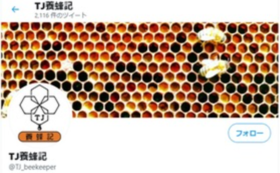 TJ養蜂記              「三才山天然ハチミツ~初夏の百花蜜~」 160g1本