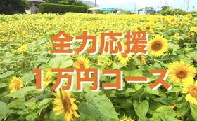 【全力応援】1万円コース!特別記念冊子にお名前掲載♪