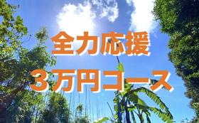 【全力応援】3万円コース!特別記念冊子にお名前の記載♪(大)