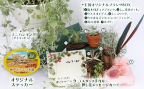植物コース