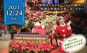 特別企画!クリスマスナイトご招待コース【12/24夜】