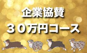 【全力応援】企業向け・30万円コース♪HP+特別記念冊子にスポンサー&お届け♪