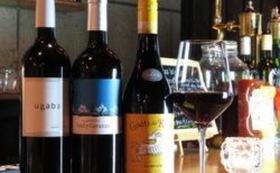 ソムリエが選ぶワイン・アルコール飲み放題(2H)※2名様でのご利用可能