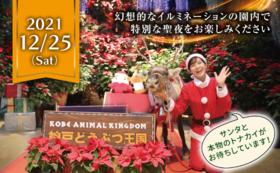 特別企画!クリスマスナイトご招待コース【12/25夜】