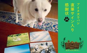 隠れメンバーアイヌ犬ウパシの直筆サイン入り感謝状