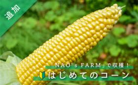「NAO's FARM」はじめてのコーン 6本セット