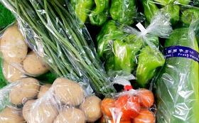 【離れていても大野を感じるギフトセット】大野産 季節の美味しいお野菜セット