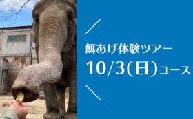 【10/3(日)開催!】宮子に餌あげ体験ツアー(昼食付き)&園にご招待コース