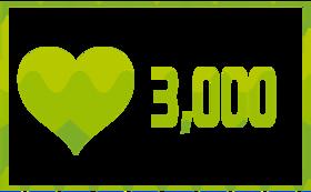 無償の愛 3,000