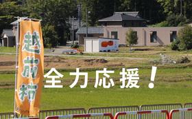 応援コース   50,000円