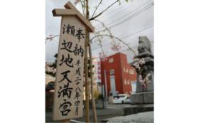 G|神様と一緒に成長を見守る青森ヒバ植樹コース