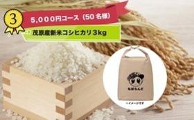 【限定50 名】茂原産コシヒカリ 新米3kgプレゼント(5000円)