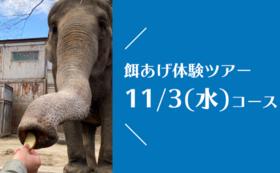 【11/3(水)開催!】宮子に餌あげ体験ツアー(昼食付き)&園にご招待コース