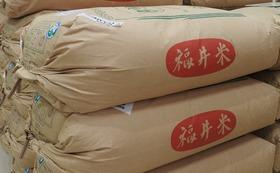 【福井市外の方向け】福井市産 新米コシヒカリ(玄米)60㎏