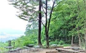 【福井市外の方向け】下市山頂上広場で記念植樹