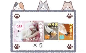 ご支援感謝 + カレンダー5部 + 写真集2種