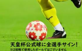 【1点のみ】全選手直筆サイン入り天皇杯公式球コース