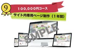 サイト内専用ページ制作(1年間公開)(100000円)