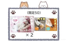 (限定50)ご支援感謝 + カレンダー2部 + 写真集2種